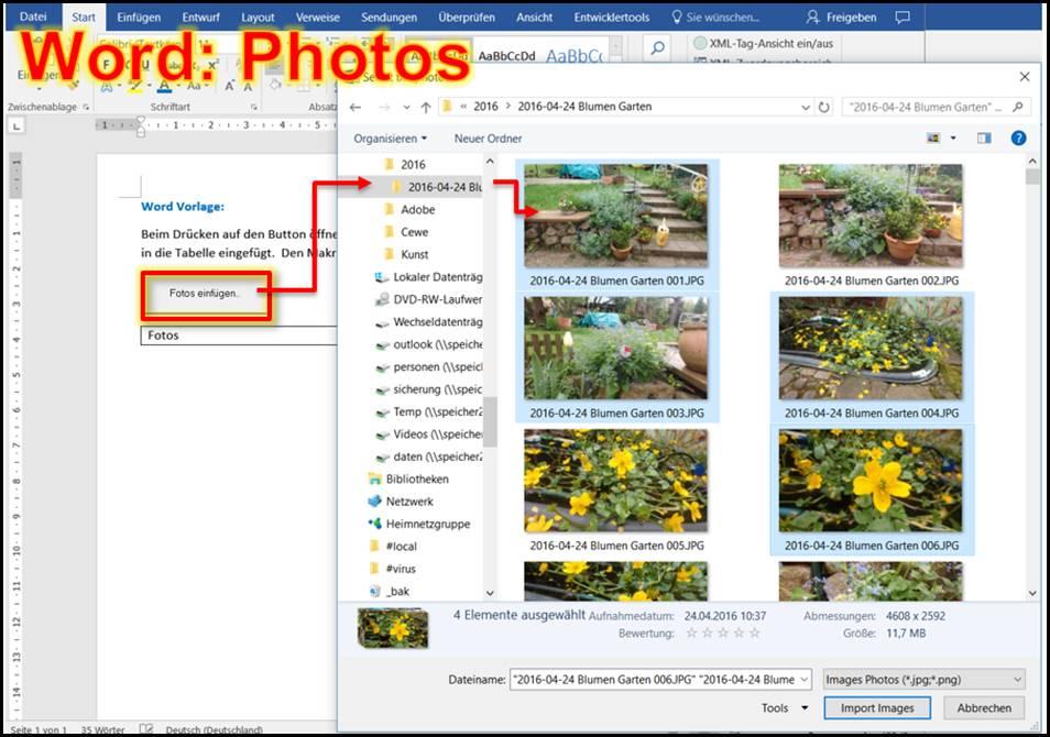 word vorlage fotos einf gen in eine mehrspaltige tabelle