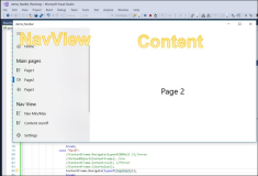 UWP: Frame to Empty Content